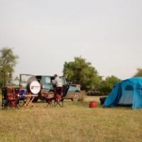 Bush camping at the delta - $
