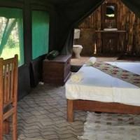 Udzungwa Forest Camp -$