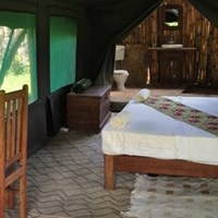 Udzungwa Forest Camp -$