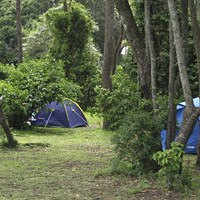 Public Campsites in the Mara Triangle - $