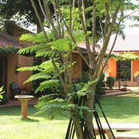 Entebbe Airport Guesthouse - $$