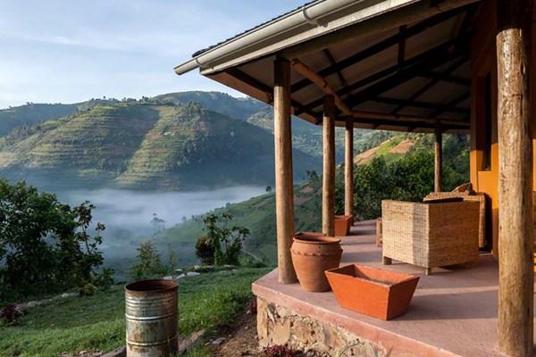 Gorilla Valley Lodge - $$