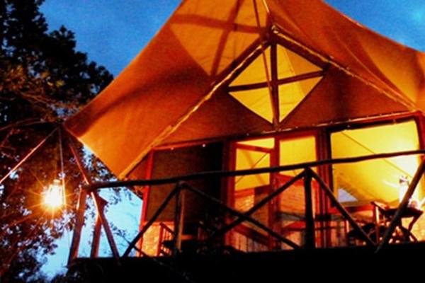 The Bush Lodge - $$