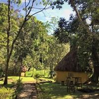 Nshongi Camp - $