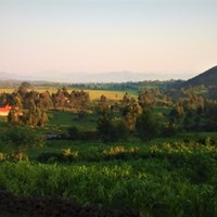 Amajambere Iwacu Community Camp - Mgahinga - $