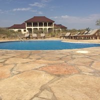 Lake Eyasi Safari Lodge- $$
