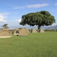 Simba Public Campsite- $