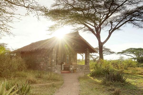 Ndutu Safari Lodge- $$